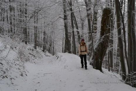 żółty szlak przez Przełęcz Wyżną tzw. końska droga