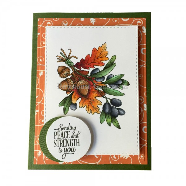 Rowhouse Greetings | Thinking of You | Olive and Oak by Power Poppy