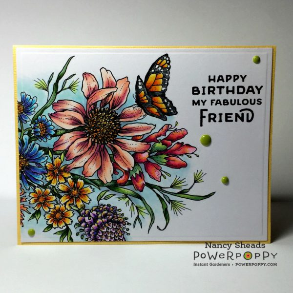 Rowhouse Greetings | Pure Prairie Bouquet by Power Poppy