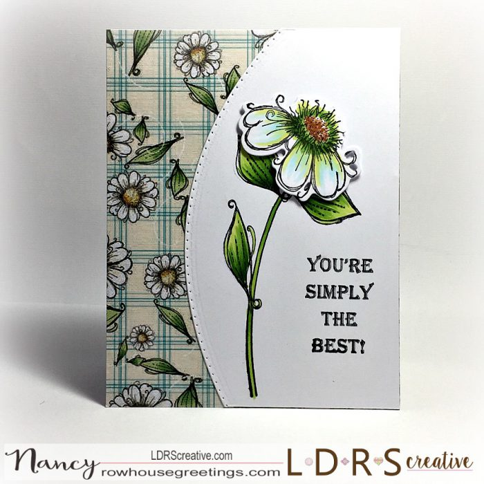 Rowhouse Greetings | Daisy Daisy by Polkadoodles