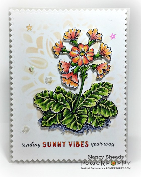 Rowhouse Greetings | Spring Border One by Power Poppy