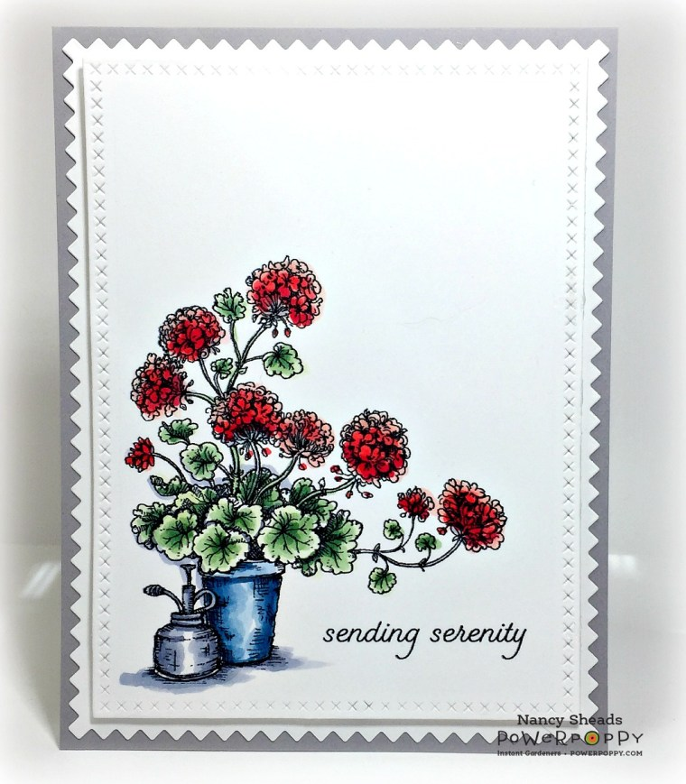 Rowhouse Greetings | Potted Geraniums by Power Poppy