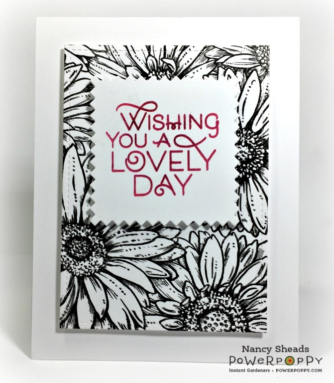Rowhouse Greetings | Enchanted Garden Collection | Big Sexy Blooms | Power Poppy