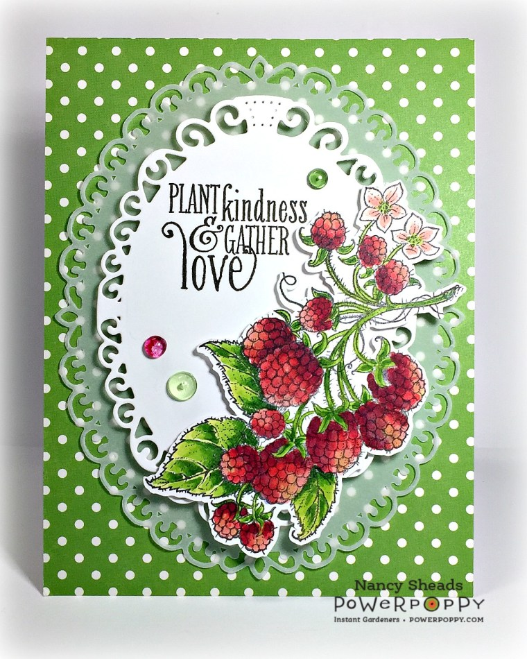 Rowhouse Greetings | Summer Berries by Power Poppy