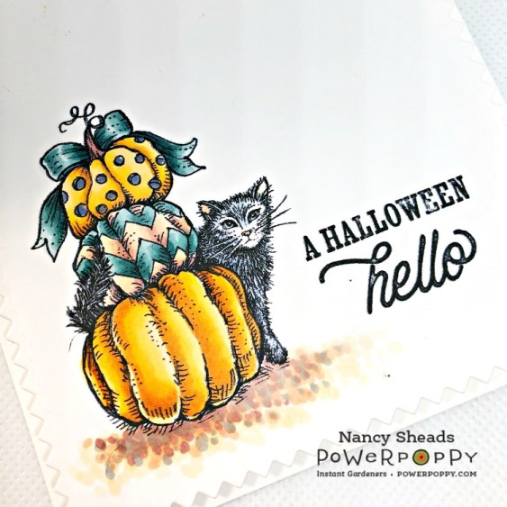 Rowhouse Greetings | Boo Cat and Pumpkins by Power Poppy