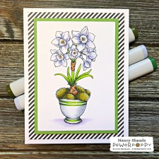 Rowhouse Greetings | Mossy Pots with Paperwhites: Accent Pieces Digital Stamp Set by Power Poppy