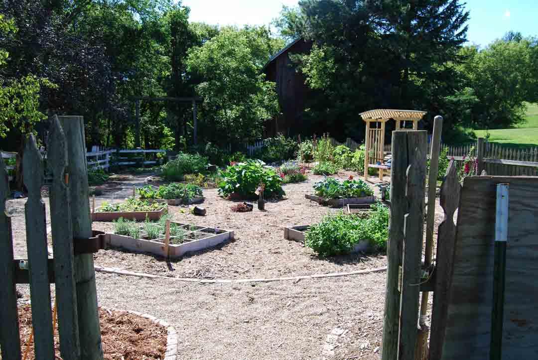 garden011