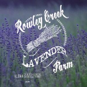 Rowley Creek Lavender Farm