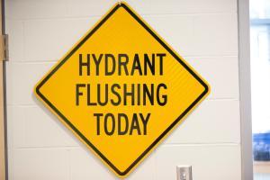 Flushing Information