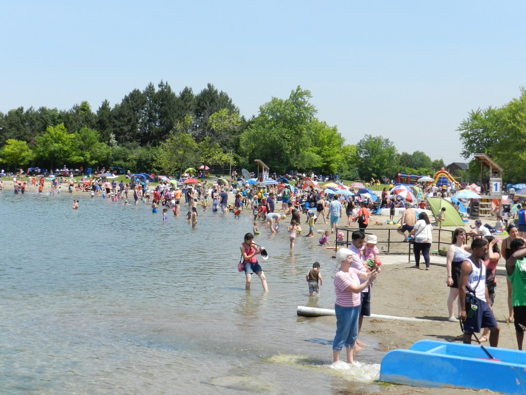 Families enjoying a beautiful day at the beach and the vast number of organized activities