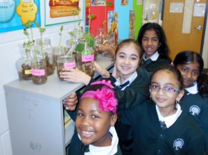 Students proud of their germination experiment