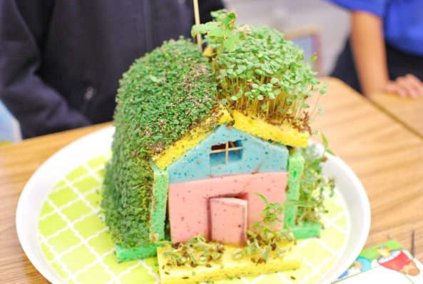 A house made with plants by students at RMS Private Schools