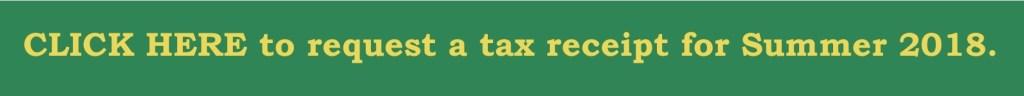 RMS Summer Camp Brampton tax receipt