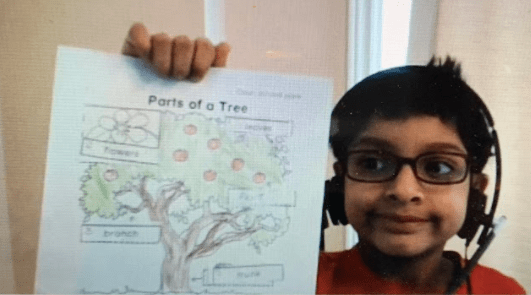 A young male student holding up his drawing of a tree
