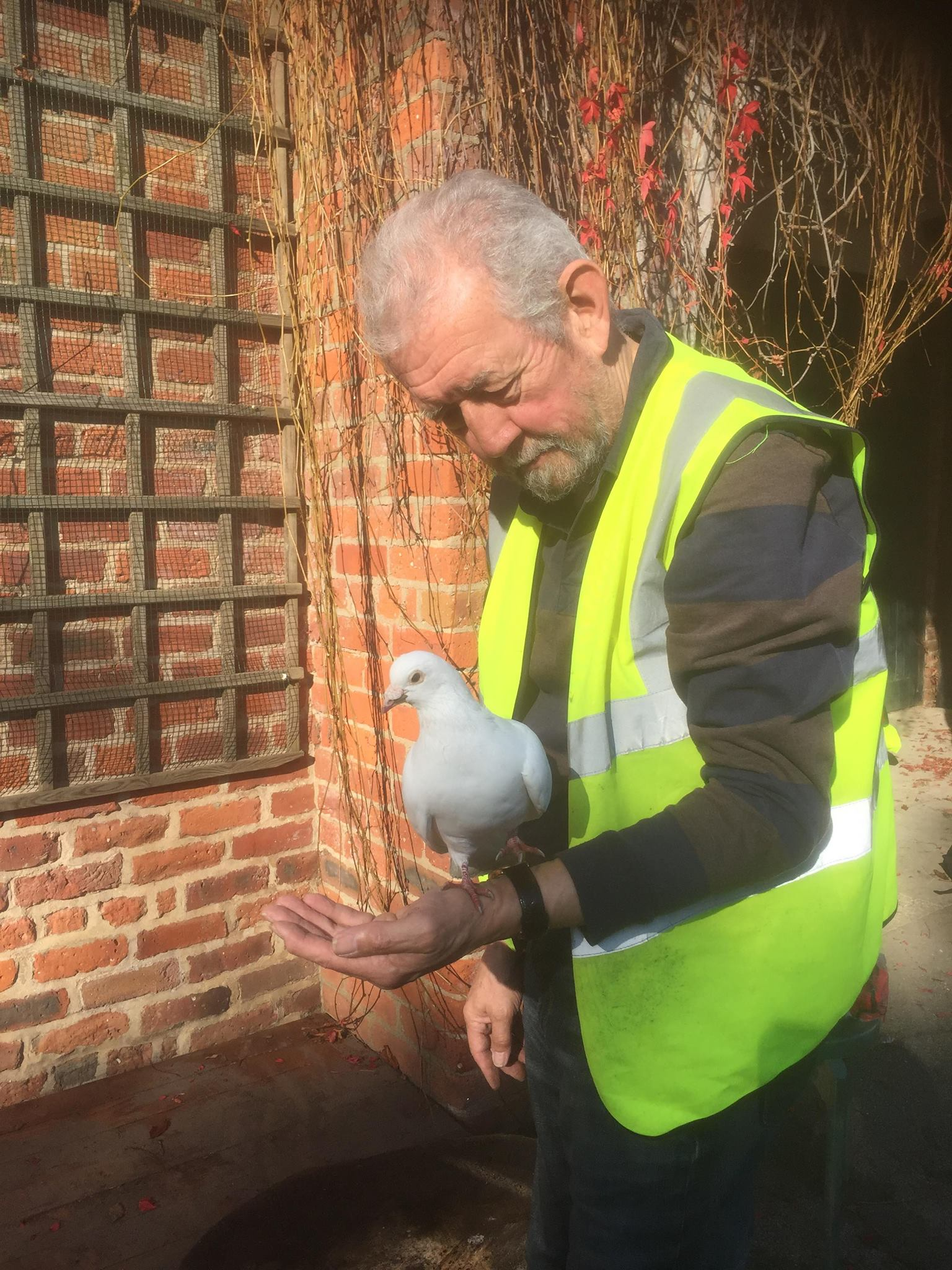 Rowntree Park volunteer and dove