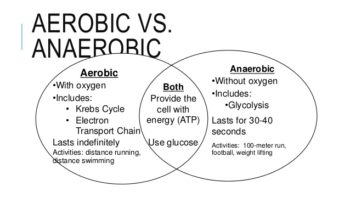 aerobic-1-side-by-side