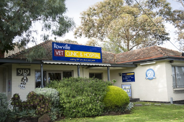 ROWVILLE VET CLINIC JUNE 2015_4694