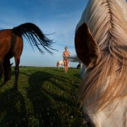 photograph of nude woman in a feild with horses by roxanne darling