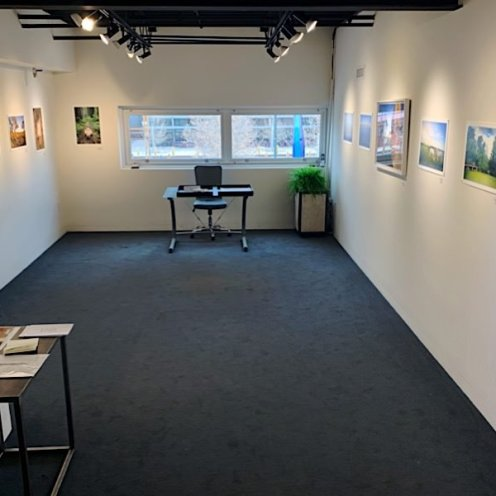 photo from roxanne darling solo show - wide shot of the gallery