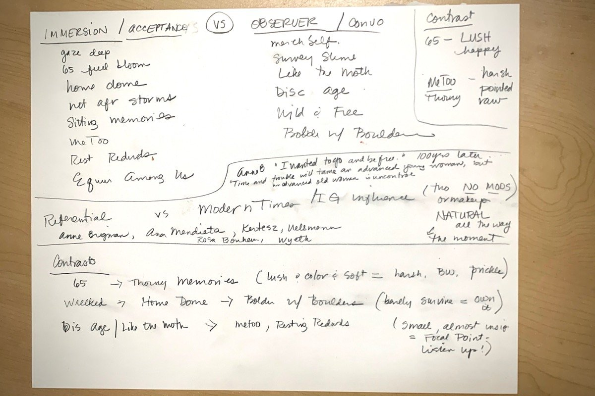 photo of artwork concept map for writing an artist essay by roxanne darling