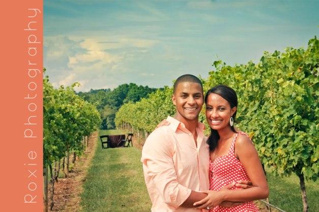 Proposal at Childress Vineyards