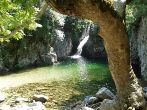 ИН йога на петте сетива @ о-в Самотраки | Гърция