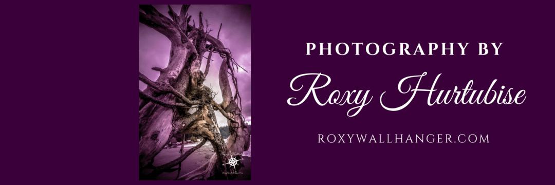 Photography by Roxy Hurtubise on Fleece Blankets