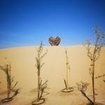 Image of Love Lakes Dubai, a Dubai's new heart shaped lakes located at Al Qudra, the lake is universal symbol of love