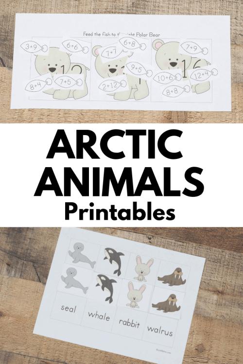 small resolution of Arctic Animal Printable Packs for Preschool and Kindergarten - Royal Baloo
