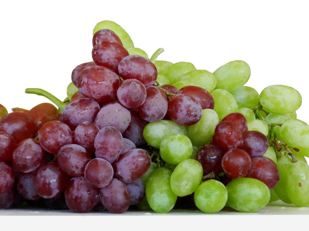 水果酵素原液 - 御菓釀水果酵素-健康與美味的生活家