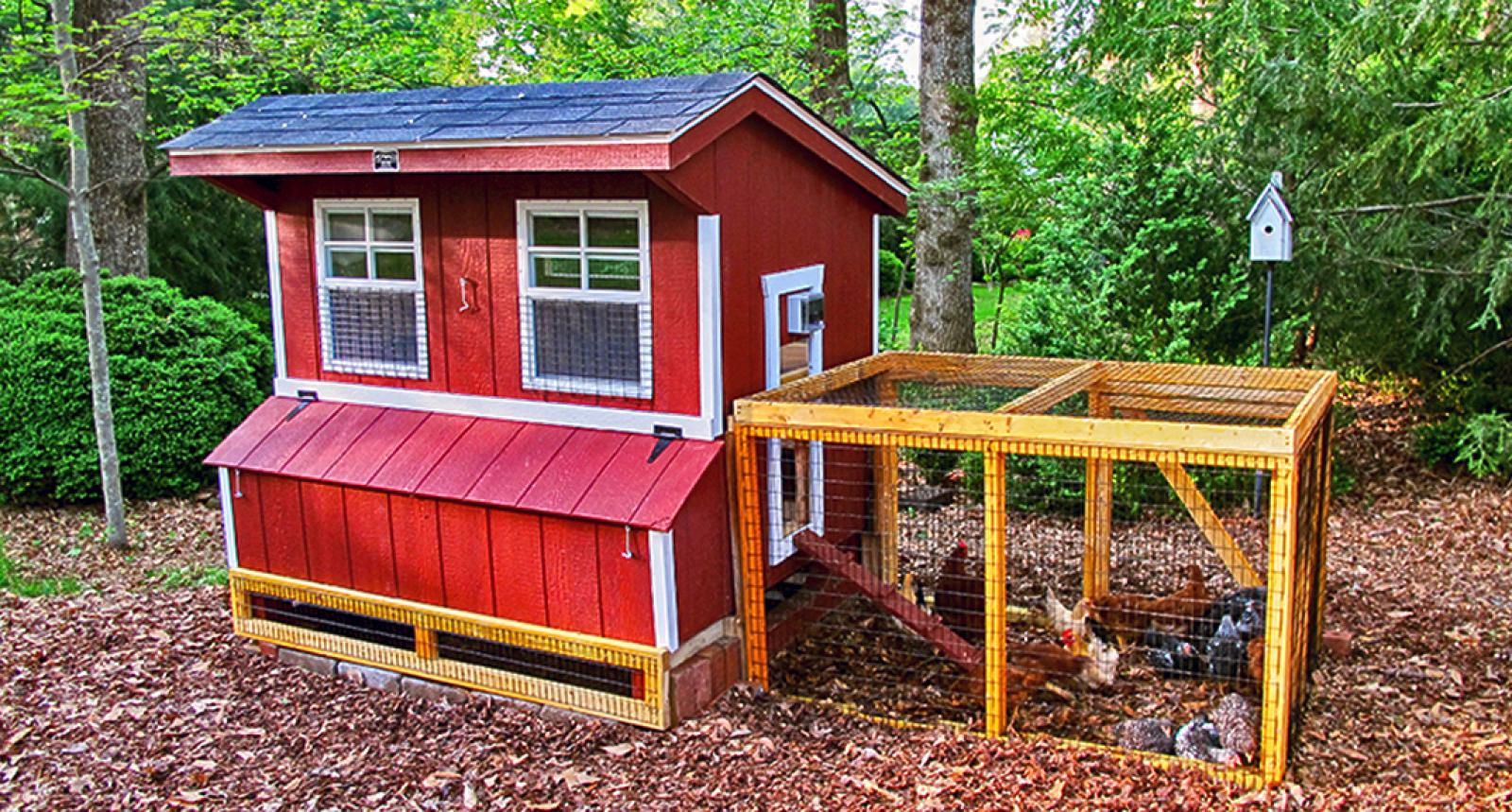 chicken-coop for sale