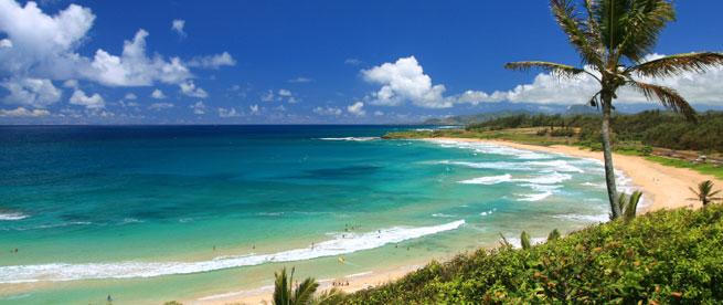 The Royal Coconut Coast On Kauai, Hawaii