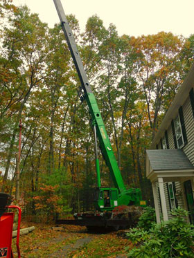 Crane removing large trees in Peabody