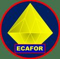 Le logo du cabinet ECAFOR