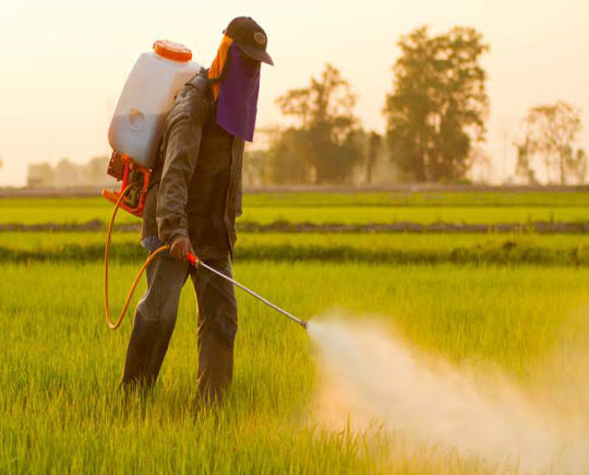 WARNING...NAFDAC bans use of agro-chemical, snipers as insecticides