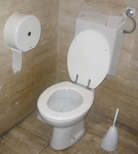 47m Nigerians have no access to toilets -FG