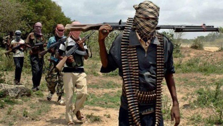 Gunmen kill APC Chairman in Katsina