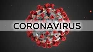Global coronavirus cases top 25 million – Johns Hopkins tally