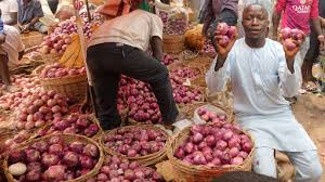 Onion farmers plead for increased investment in Sokoto, others