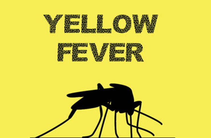 Yellow fever outbreak: Enugu lawmaker lauds State Govt. on quick intervention