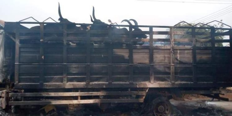 Youths burn truck and the cattle in it after a boy wa