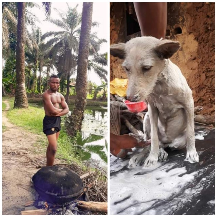 """""""I'm wishing that our dreams come true"""" - Nigerian man writes as he introduces his 'glamourous' dog named Lady Chinyere"""