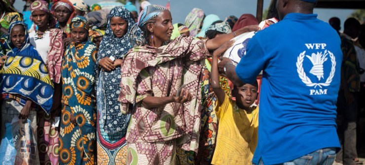 41m people under risk of famine, says WEP