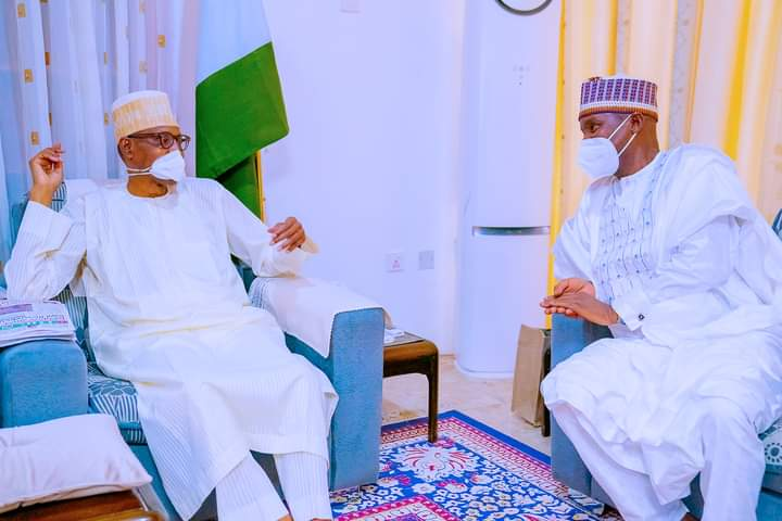 Sallah: Defence minister visits Daura on homage to Buhari