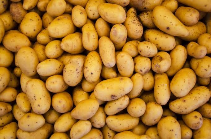 600 farmers to benefit from FG's potato value chain programme in Niger