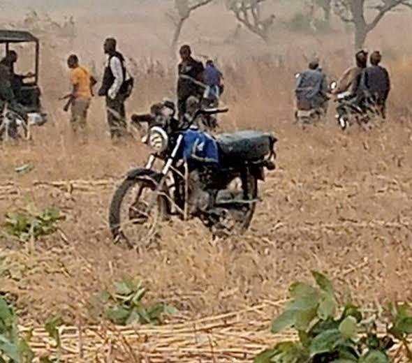 Customs intercept over 200 motorcycles from suspected bandits in Katsina