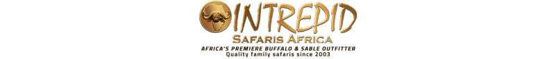 intrepid-logo-2019