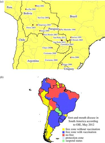 Elimination of foot-and-mouth disease in South America ...