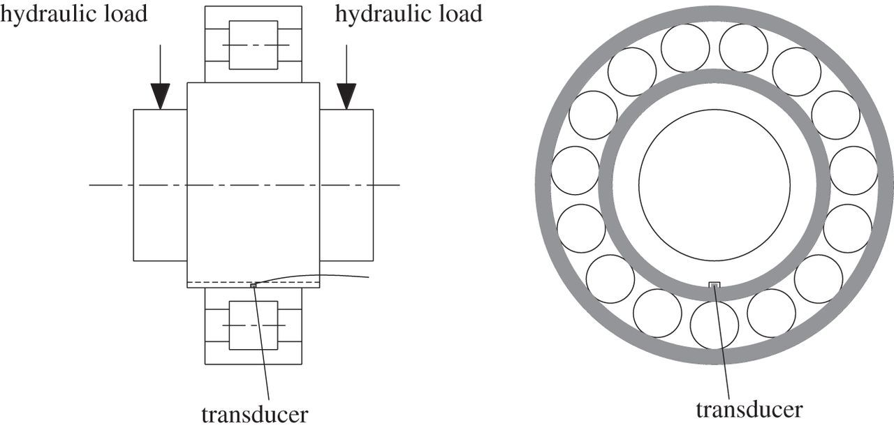 Direct load monitoring of rolling bearing contacts using