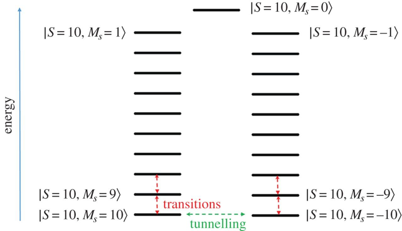 Stochastic Boltzmann equation for magnetic relaxation in